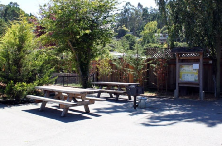 Picture of picnic tables at Kay Park.