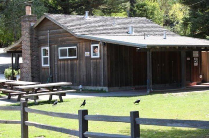 Picture of the cabin from the back with picnic tables and grassy area.
