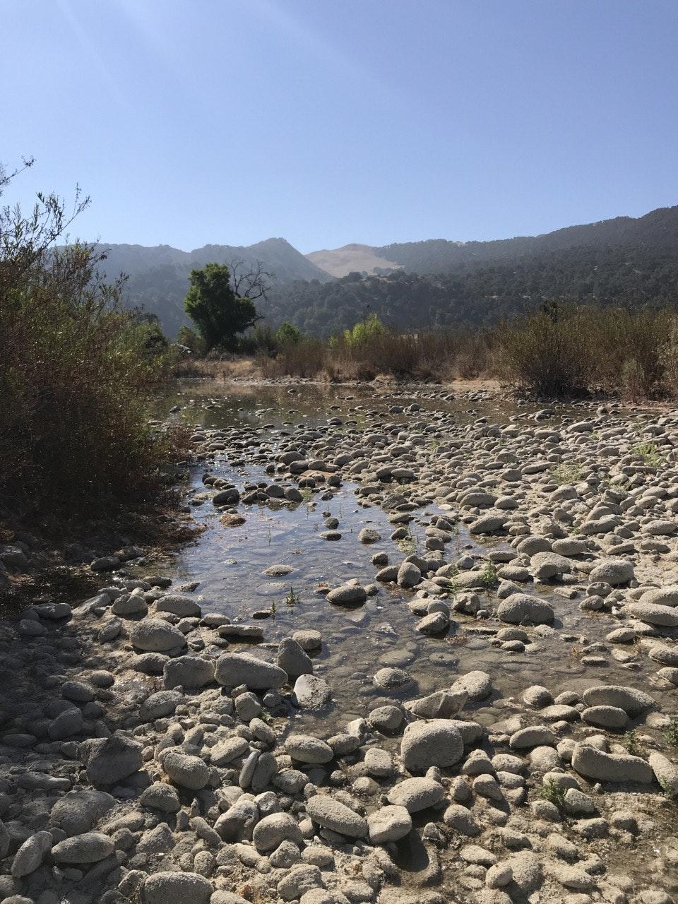 Santa Ynez River water flow