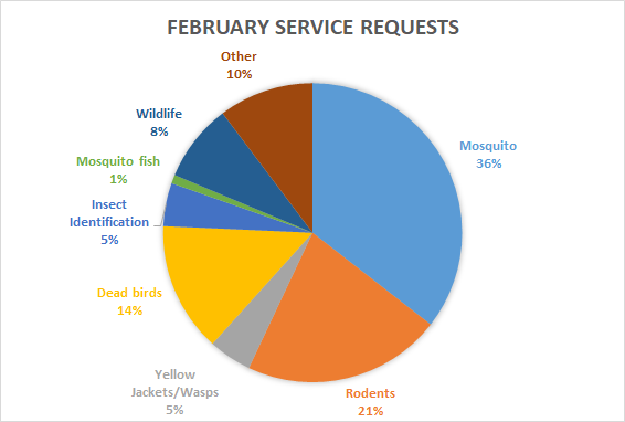 Pie chart showing percentage of service requests by category for February 2021