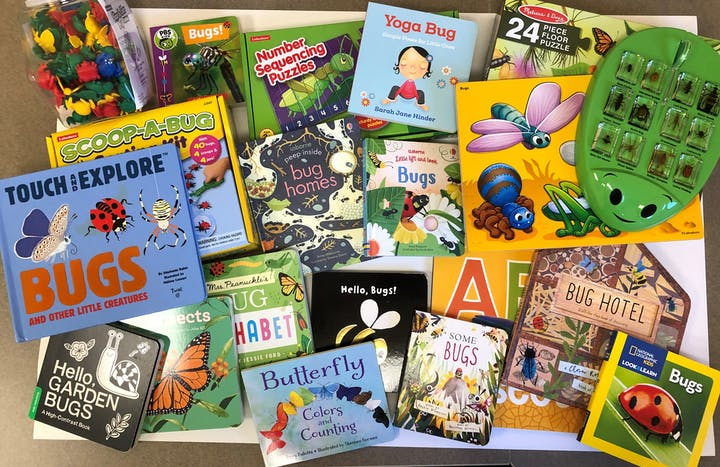 An assortment of bug-themed children's books and small bug toys