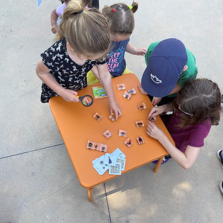 A square orange table is covered in insects embedded in clear resin.  Four children are at the table looking down at the bugs. One child is holding a magnifying glass.