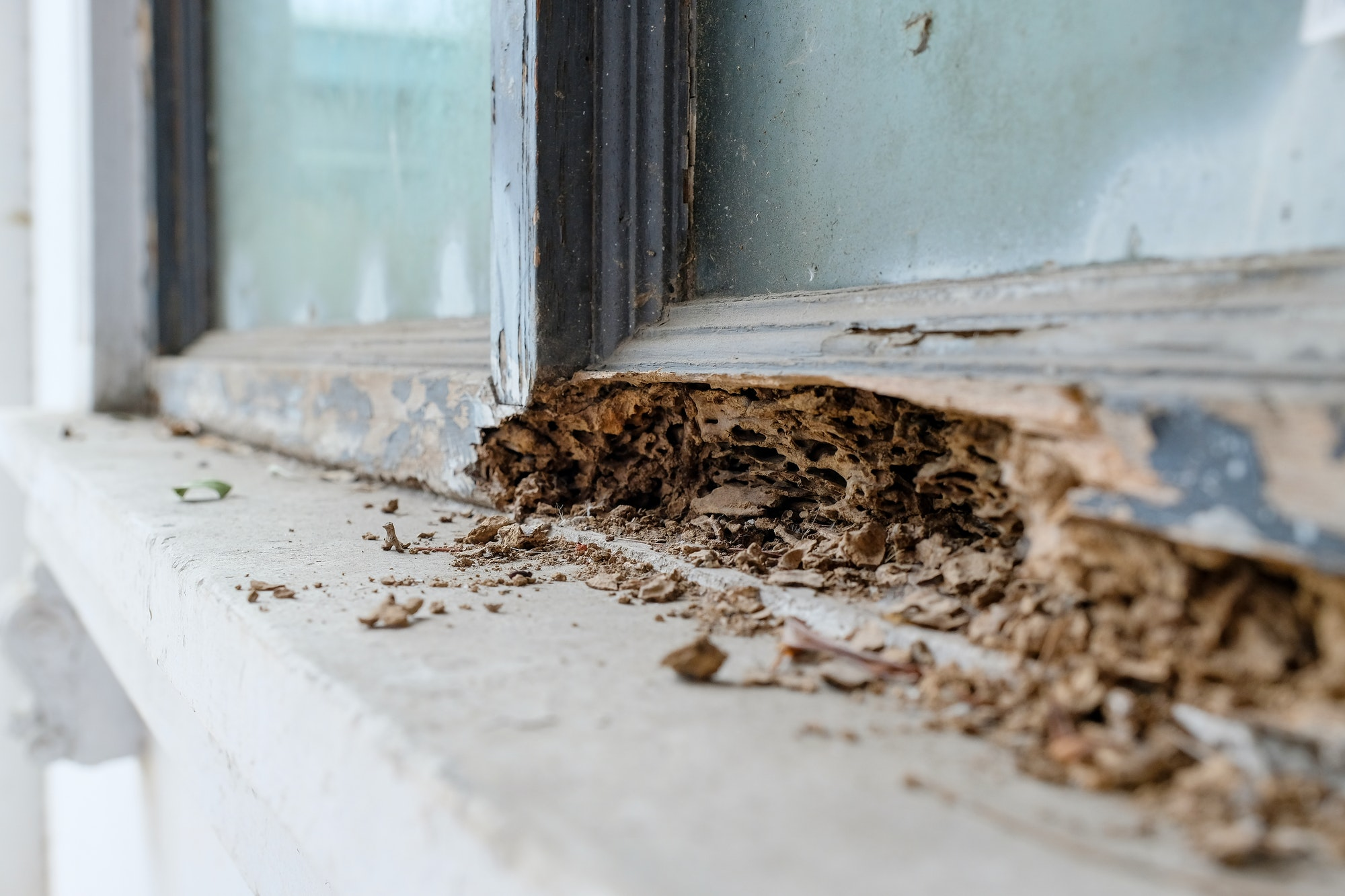 The lower portion of an outdoor window and ledge, with severe termite damage of the wood window frame.