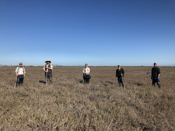 Five staff members standing in marsh