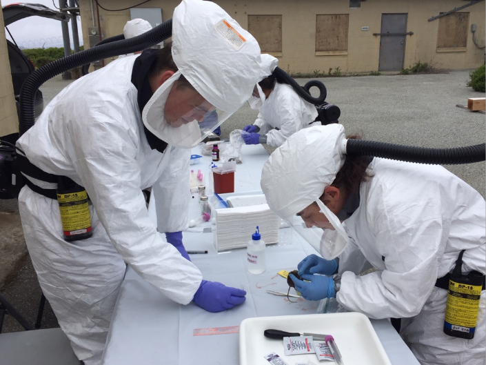 Three people in white Tyvek suits are around a table covered in white plastic.  One person holds a small brown mouse while the other person looks on.