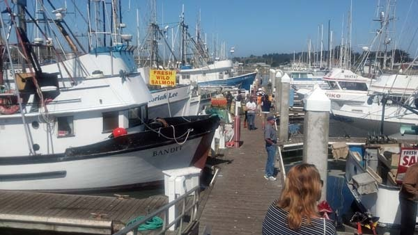 Buy Fish off the Boats - San Mateo County Harbor District