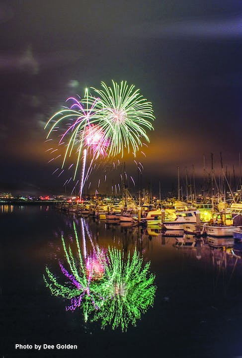 May contain: nature, outdoors, water, night, fireworks, and waterfront