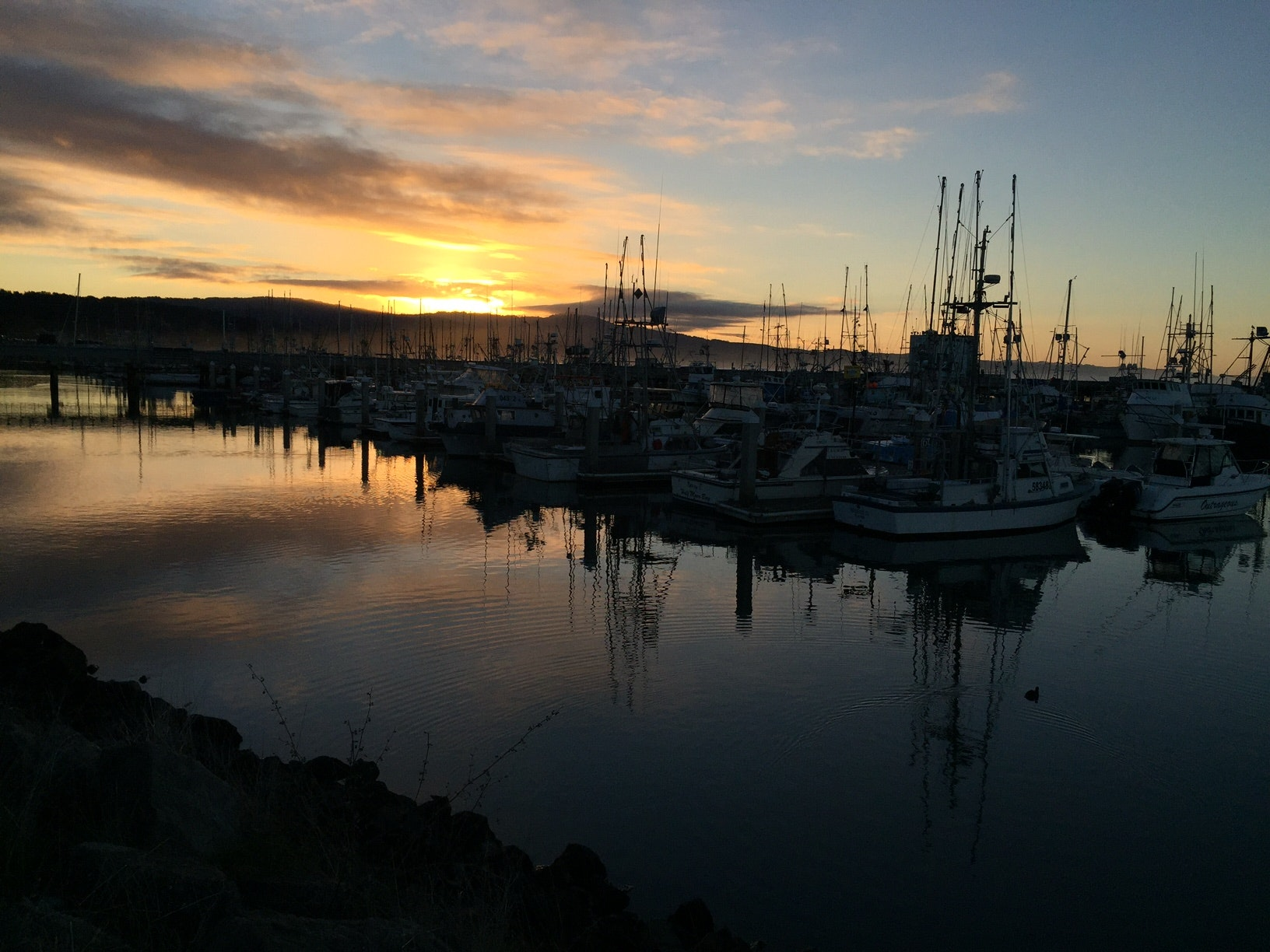 Image Oyster Point Marina Sunrise