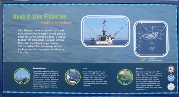 Image Marine Fisheries
