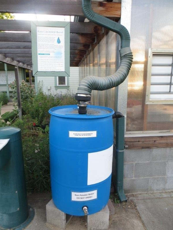 May contain: barrel and rain barrel