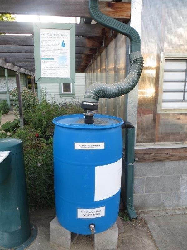 May contain: barrel and rain barrel