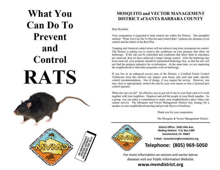 Cover of brochure on how to prevent rats