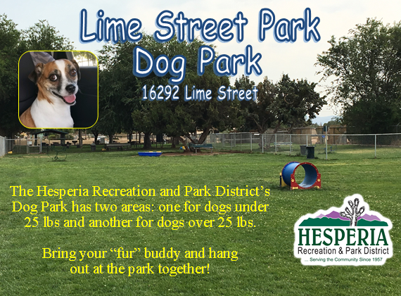 "Lime Street Park Dog Park 16292 Lime Street Flyer; The Hesperia Recreation and Park District's Dog park has two areas: one for dogs under 25 lbs and another for dogs over 25 lbs. Bring your ""fur"" buddy and hang out at the park together!"