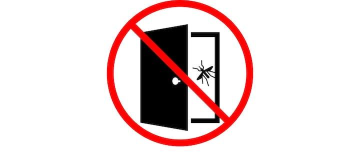 Icon of open door with mosquitoes flying in