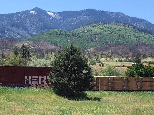 Cottonwood Mountain
