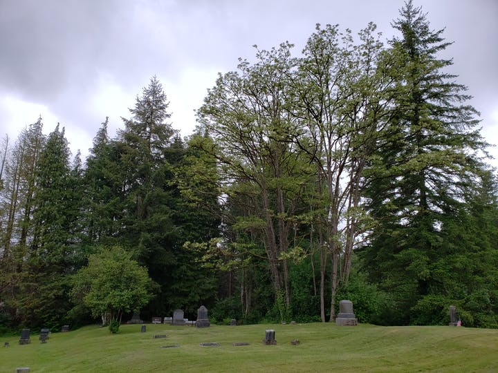 Photo of Cedar Hill Cemetery in Spring time with trees in background
