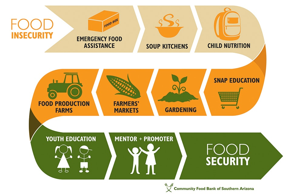 Infographic of food security chain
