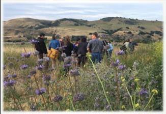 Photo of field trip in a field