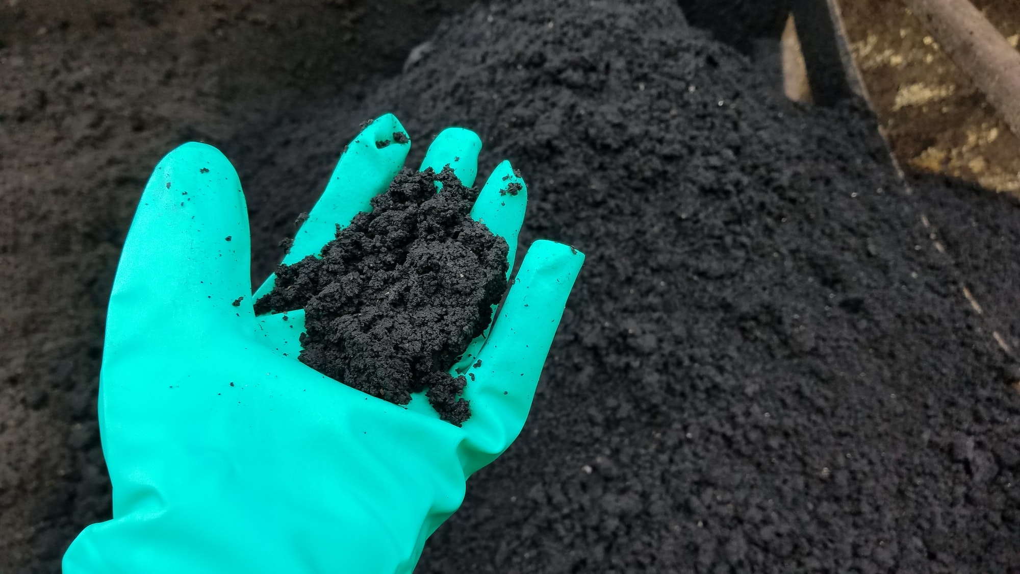 Gloved hand holding biosolids. Biosolids in background.