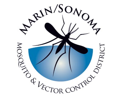 May contain: anisoptera, invertebrate, dragonfly, animal, and insect