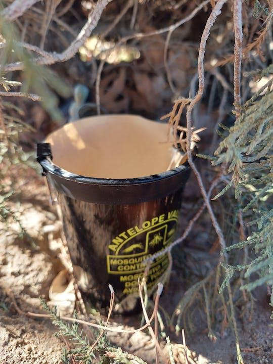 May contain: bucket