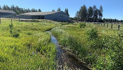 Riparian Condition 2020. Riparian Fence established Livestock is controlled from the creek.