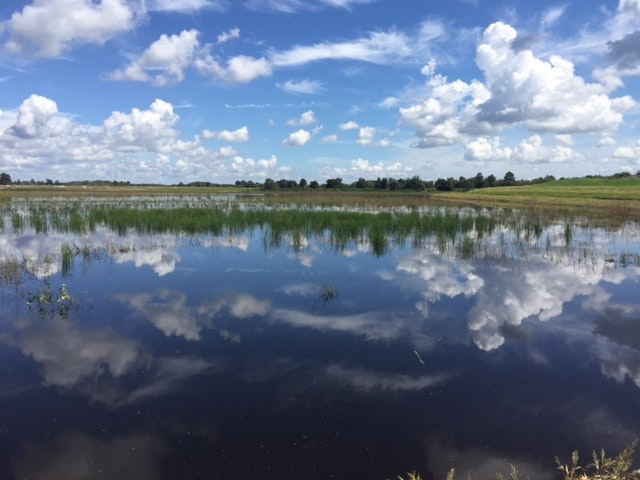 May contain: nature, water, outdoors, land, weather, cloud, cumulus, and sky
