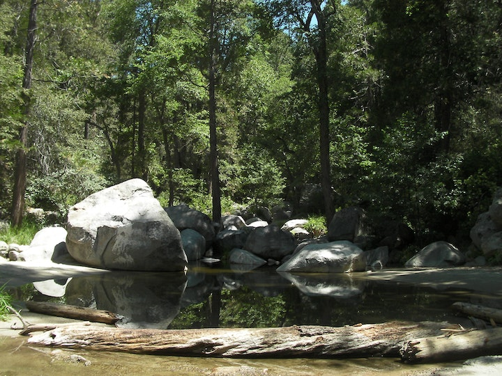 San Jacinto Basin with water, rocks, and trees