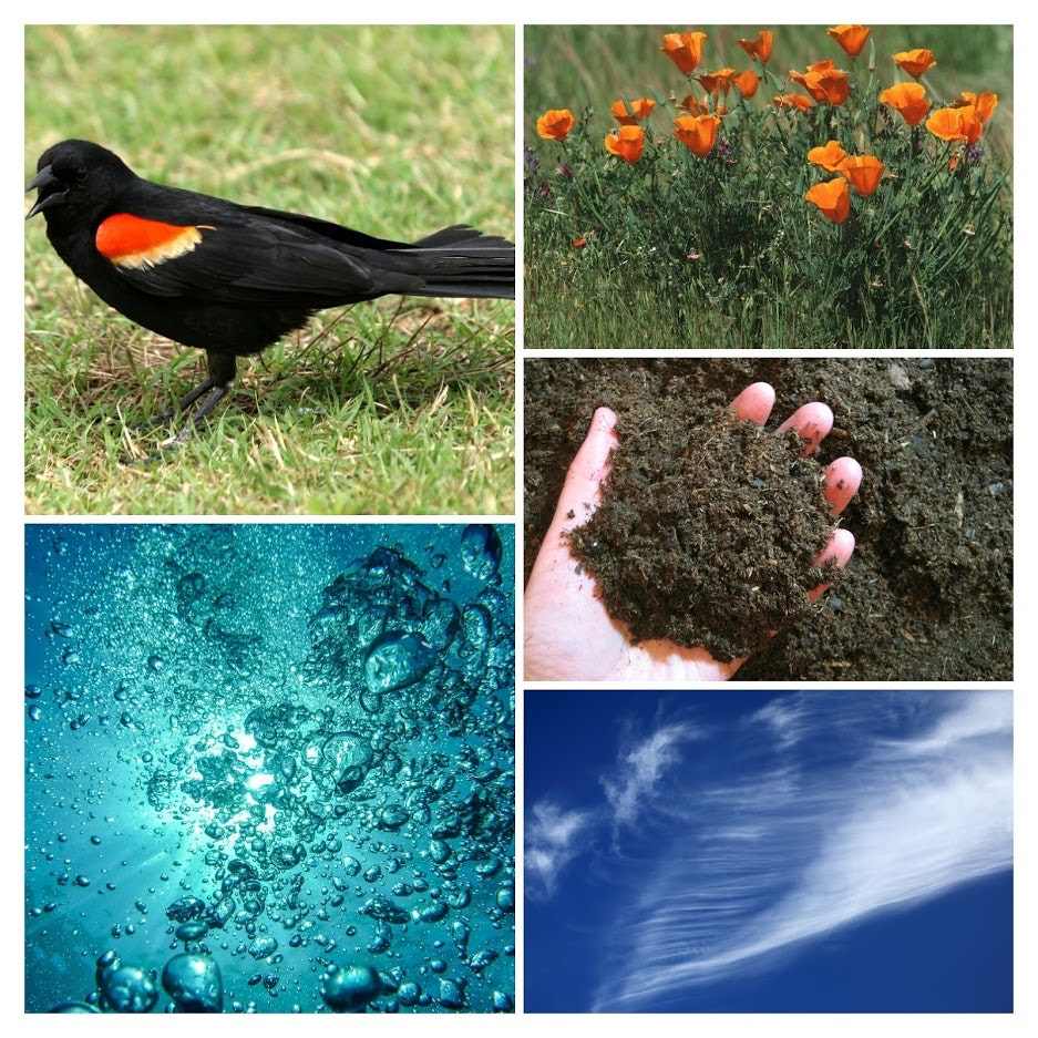 Natural resources; wildlife, plants, soil, air and water.