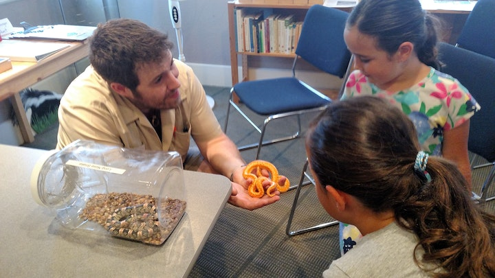 Guest speaker for Day of Wonder displaying native snake species