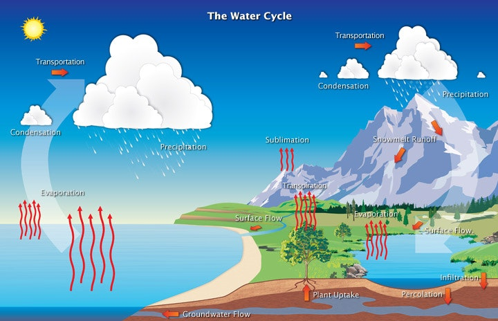 Image of the water cycle - evaporation, condensation and precipitation