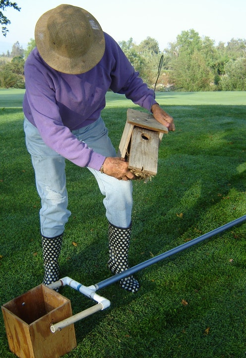 Person monitoring a bluebird nest box.