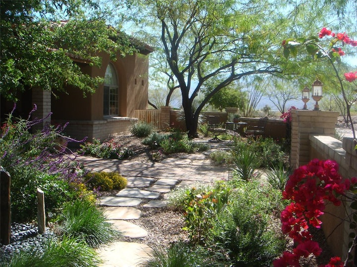 Sustainable yard with water wise landscaping