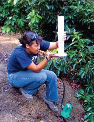 Image of irrigation auditor in the field at an avocado grove.
