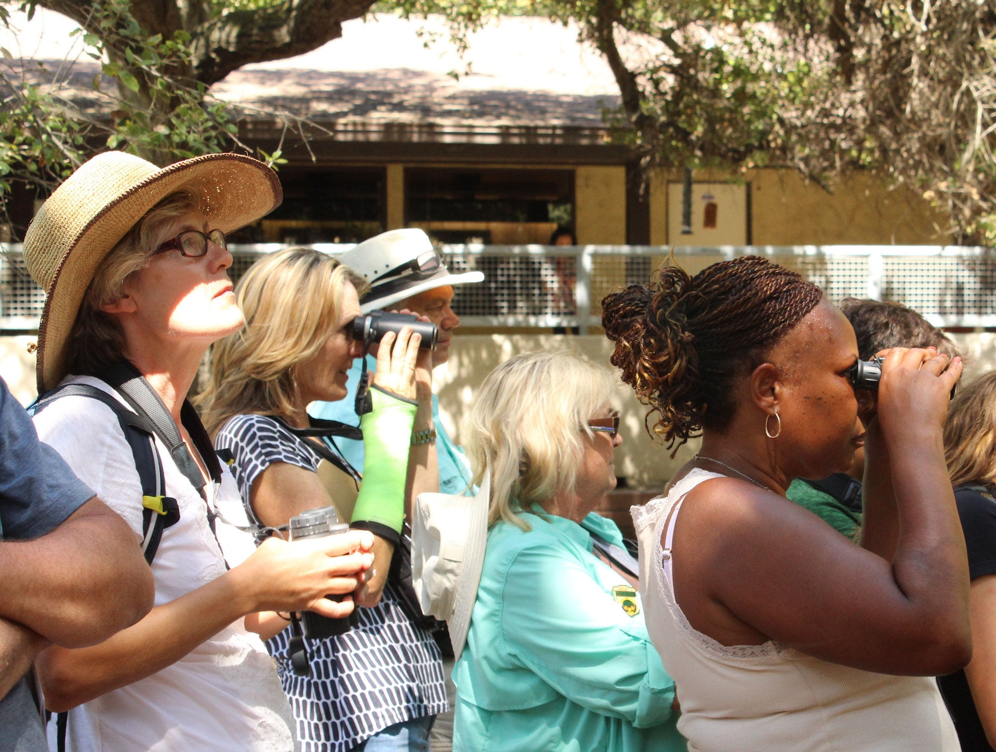 Image of adults using binoculars to observe nature outside.