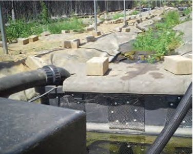 Image of pump box and raceway for fish on quarantine periods.