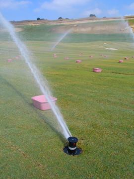 Sprinklers watering a grassy field.