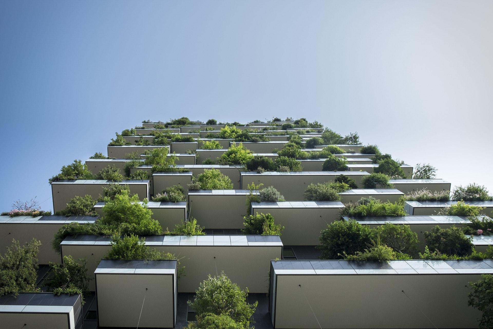 May contain: tall apartment building, with lots of trees on balconies