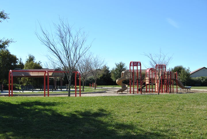 plants, grass, play area, and playground