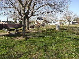 May contain: outdoors, nature, yard, and backyard