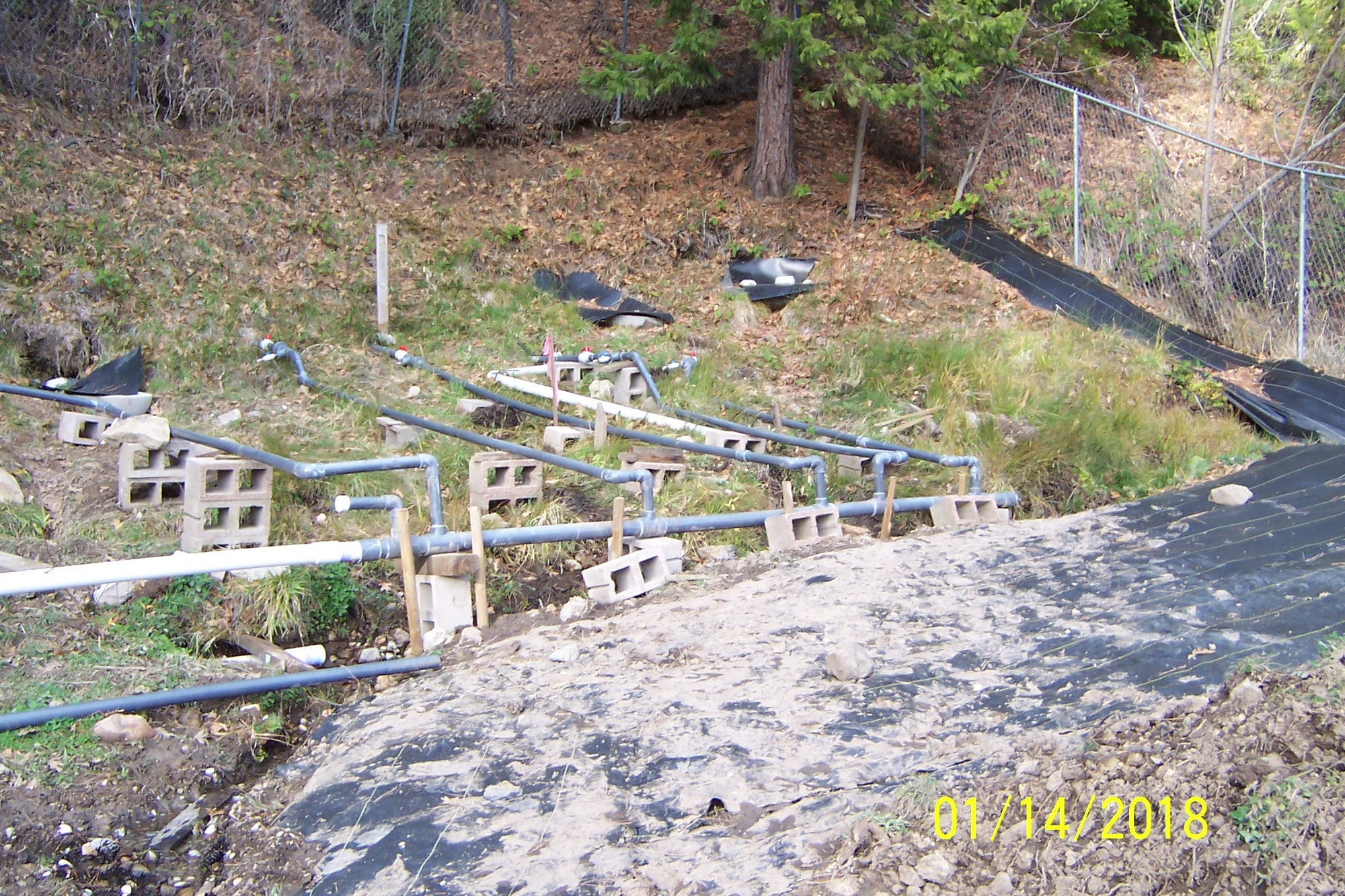 Driven pipes at Ram Spring shortly after installation