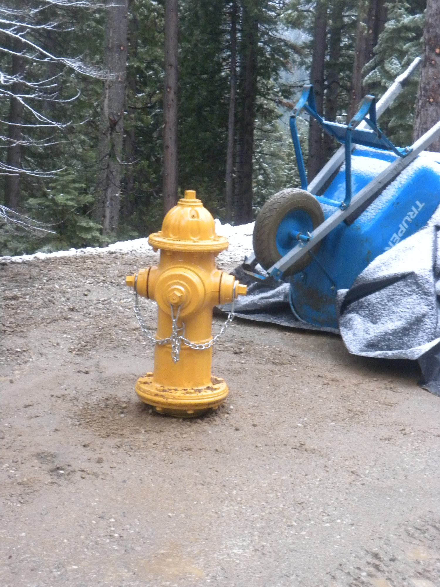 The newest member of Alleghany's fire hydrant family, located at the tank site. Dec. 5, 2018