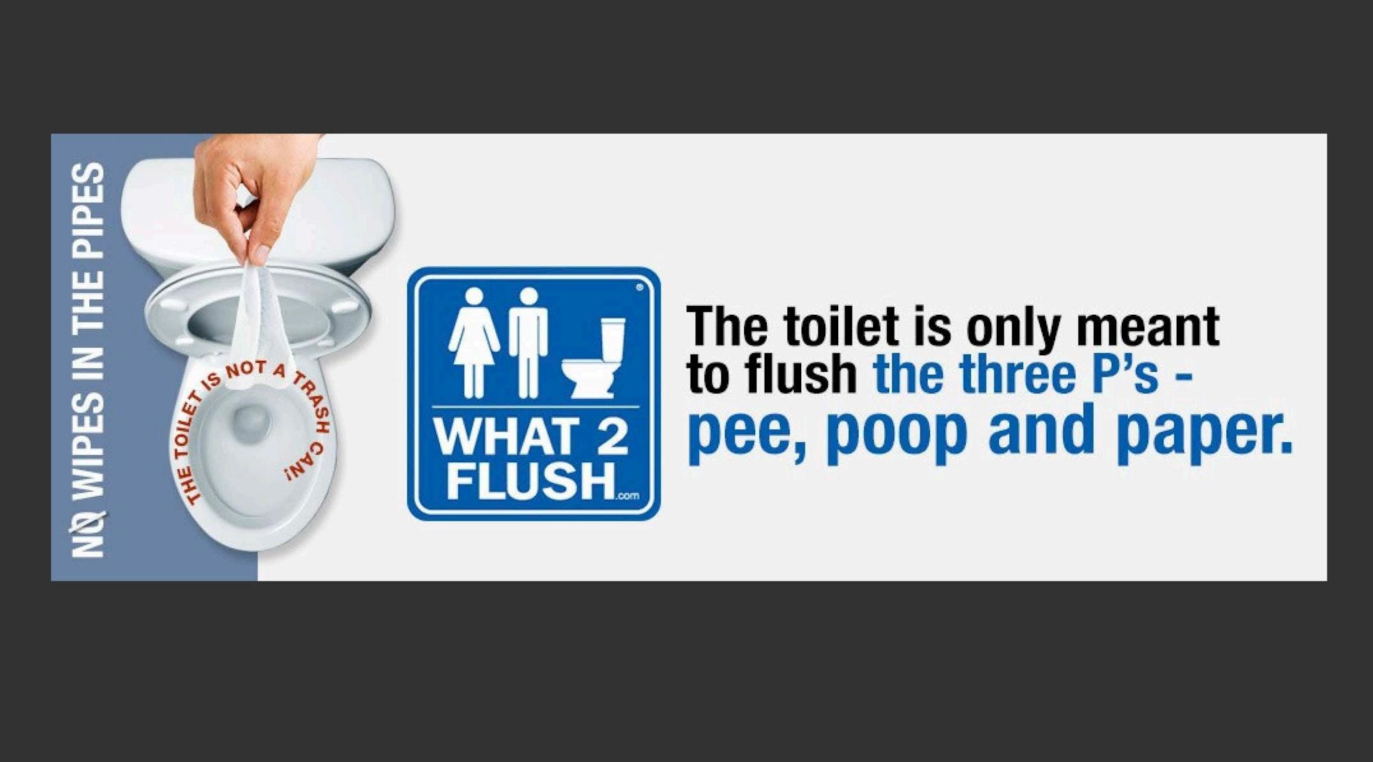 The 3 Ps: Pee, Poop, Paper
