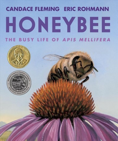 May contain: honey bee, insect, animal, invertebrate, bee, and apidae