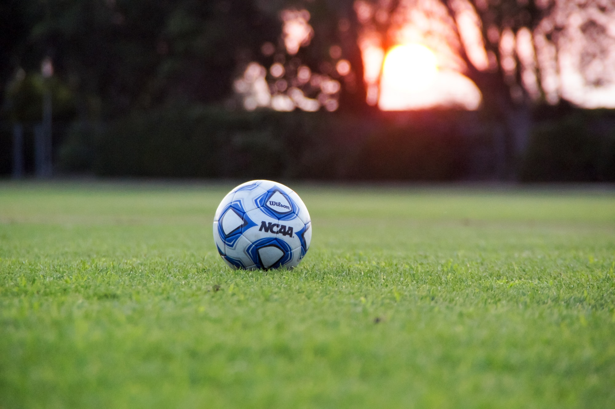 May contain: soccer ball, soccer, sport, football, sports, team, team sport, and ball