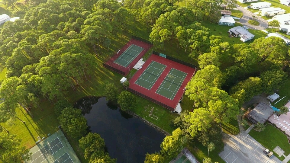 May contain: plant, grass, vegetation, sports, tennis court, and sport