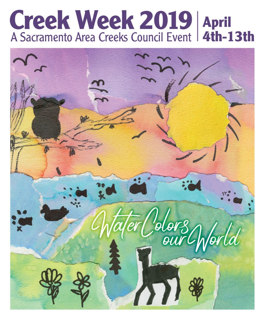 Creek Week 2019 Poster