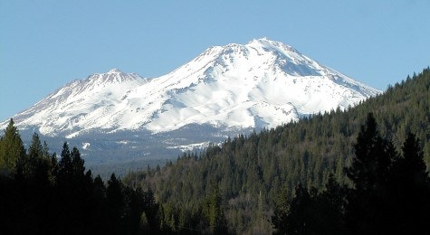 Hill, mountain with trees and mount Shasta almost totally covered with snow and blue sky.