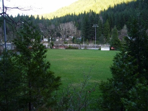 Baseball field looking from beyond outfield with trees, grass, bleachers and mountain with trees in background.
