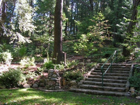 Grass with rock wall, and a cement staircase with handrails leading up to entry toad.and scattered trees.